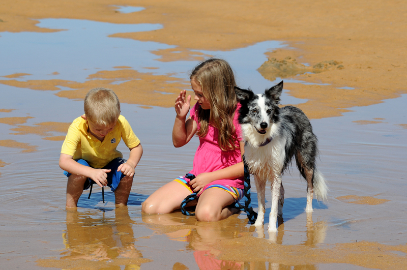 Tips For Divorced Parents For The School Summer Holidays